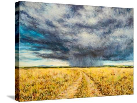 Mara Storm, 2012-Tilly Willis-Stretched Canvas Print