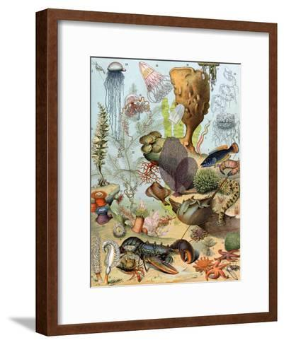 Life on the Sea Floor, Including Crustaceans and Molluscs--Framed Art Print