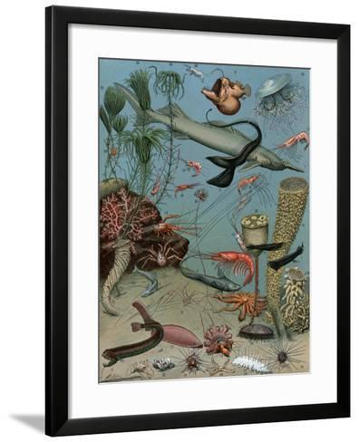 Creatures of the Sea Floor, Including Fish, Starfish, Sea Urchins, Crustaceans, Polyps--Framed Art Print