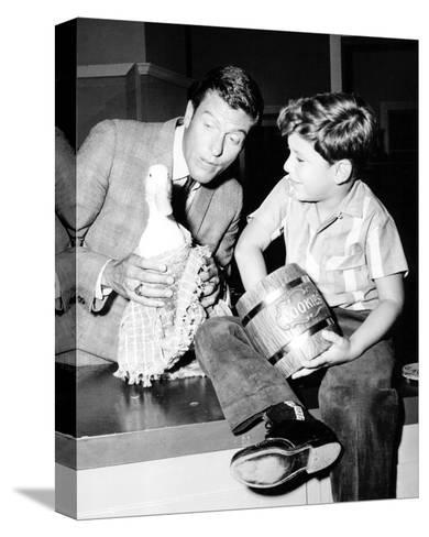 The Dick Van Dyke Show (1961)--Stretched Canvas Print