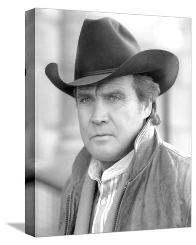 Lee Majors, The Fall Guy (1981)--Stretched Canvas Print