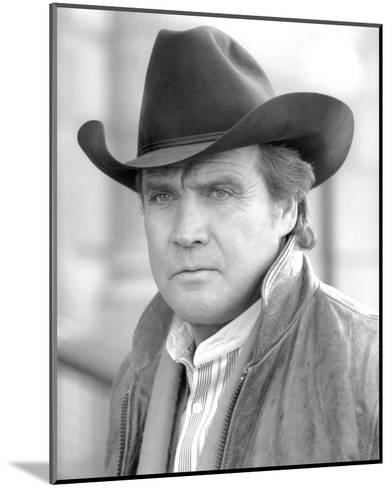 Lee Majors, The Fall Guy (1981)--Mounted Photo
