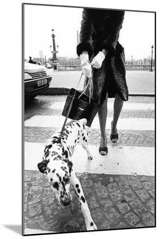 Dalmatian on a Leash-Walter Chin-Mounted Photographic Print