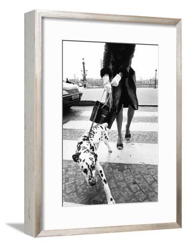 Dalmatian on a Leash-Walter Chin-Framed Art Print
