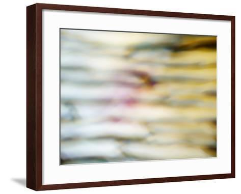 Pale Abstract-Sarah Silver-Framed Art Print
