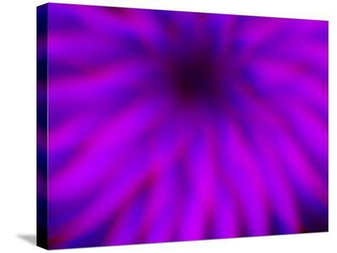 Magenta Majestic-Sarah Silver-Stretched Canvas Print