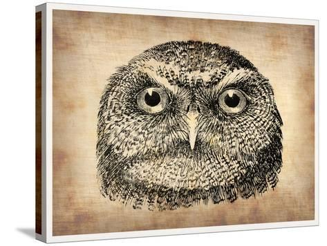 Vintage Owl Face-NaxArt-Stretched Canvas Print
