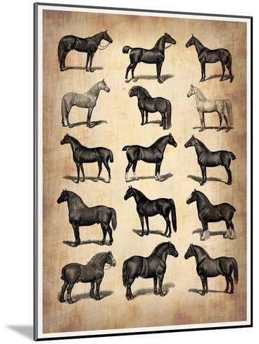 Vintage Horses Collection-NaxArt-Mounted Art Print