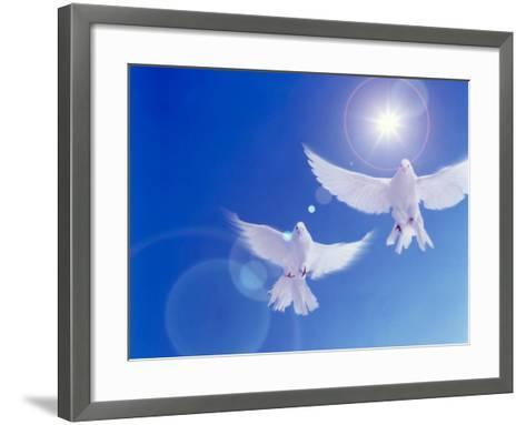 Two Doves Side by Side with Wings Outstretched in Flight with Brilliant Light And Blue Sky--Framed Art Print
