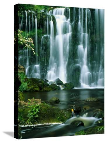 Waterfall Hebden Gill N Yorshire England--Stretched Canvas Print