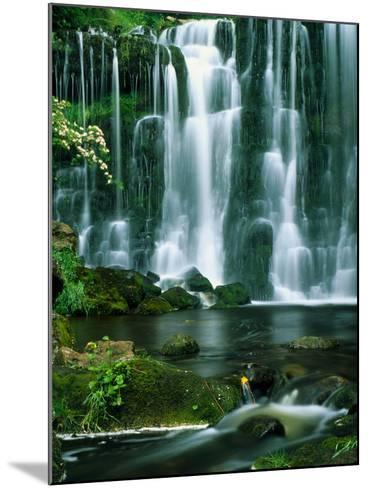 Waterfall Hebden Gill N Yorshire England--Mounted Photographic Print