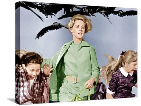 The Birds, Tippi Hedren, 1963--Stretched Canvas Print