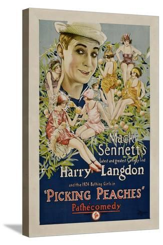 PICKING PEACHES, Harry Langdon with the 1924 Bathing Girls, 1924.--Stretched Canvas Print