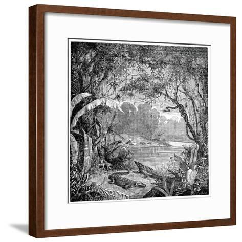 Tropical Plants And Reptiles-Science Photo Library-Framed Art Print