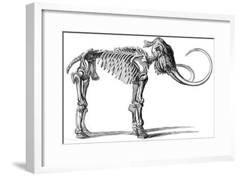 Oncoul Mammoth, 19th Century Artwork-Science Photo Library-Framed Art Print