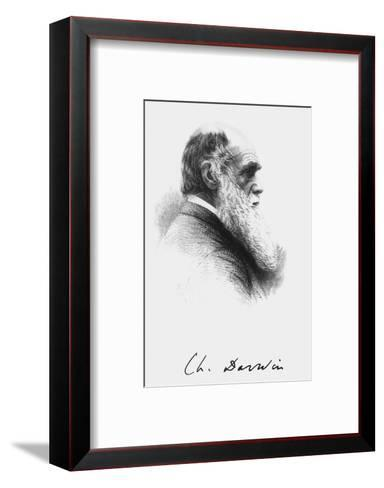 Portrait of English Naturalist Charles Darwin-Science Photo Library-Framed Art Print
