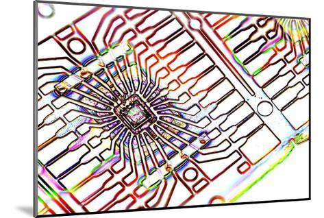 Microprocessor Chip, Artwork-PASIEKA-Mounted Giclee Print