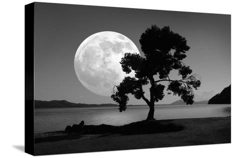 Moon Rising Over the Sea-Detlev Van Ravenswaay-Stretched Canvas Print