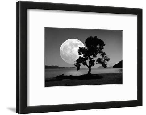 Moon Rising Over the Sea-Detlev Van Ravenswaay-Framed Art Print