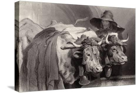 Oxen at the Tank, Geneva, Switzerland-Edwin Henry Landseer-Stretched Canvas Print