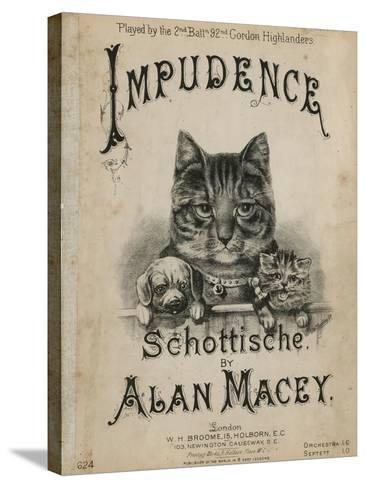 Impudence--Stretched Canvas Print