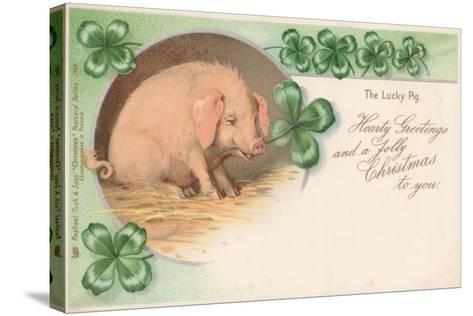 Pig in Clover--Stretched Canvas Print