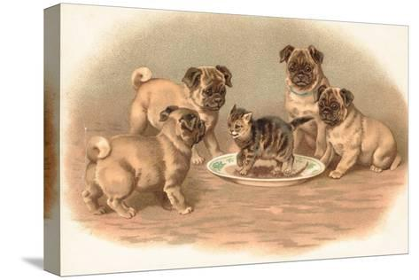 Four Pug Dogs Sitting around a Kitten on a Plate-English School-Stretched Canvas Print