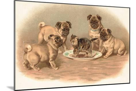 Four Pug Dogs Sitting around a Kitten on a Plate-English School-Mounted Giclee Print