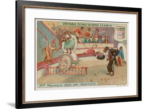 Circus of Monkeys--Framed Art Print