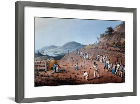 Breaking Up the Land, from 'ten Views in the Island of Antigua', 1823-William Clark-Framed Art Print