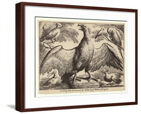 Eagle and Other Birds-Wenceslaus Hollar-Framed Art Print