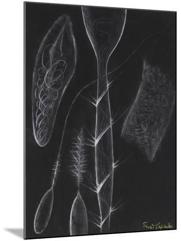 Anemone Stinging Cells-Philip Henry Gosse-Mounted Giclee Print