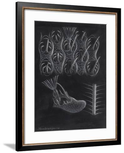 Bryozoa-Philip Henry Gosse-Framed Art Print