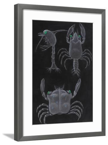 Crab Development-Philip Henry Gosse-Framed Art Print