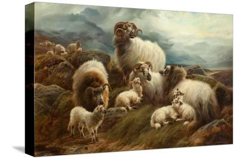Sheep in a Landscape, 1894-Robert Watson-Stretched Canvas Print