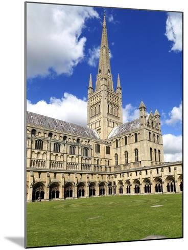 Norwich Cathedral Spire , Nave, Transept and Cloisters--Mounted Giclee Print