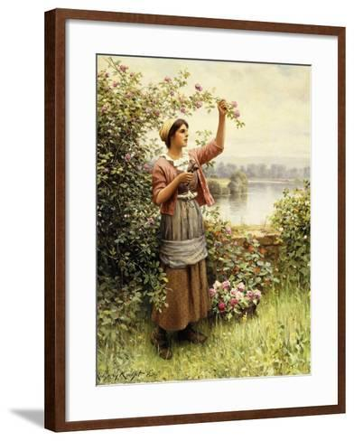 Cutting Roses Along the Seine-Daniel Ridgway Knight-Framed Art Print