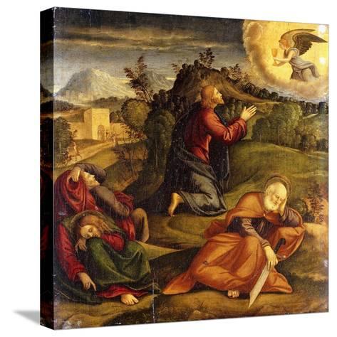 The Agony in the Garden-Girolamo da Santacroce-Stretched Canvas Print