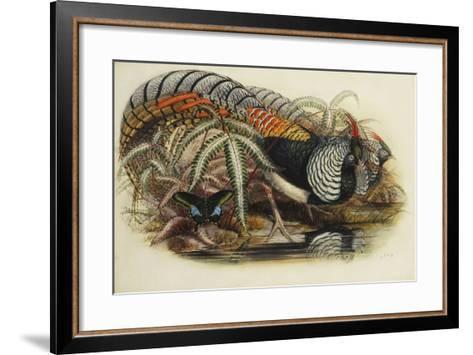 Lady Amherst's Pheasant-Henry Constantine Richter-Framed Art Print