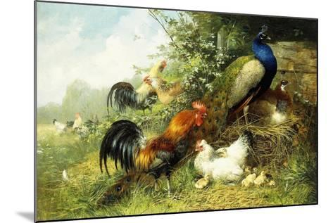 Fowl and Peacocks, 1899-Arthur Fitzwilliam Tait-Mounted Giclee Print