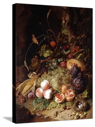 Still-Life with Fruit and Insects-Rachel Ruysch-Stretched Canvas Print