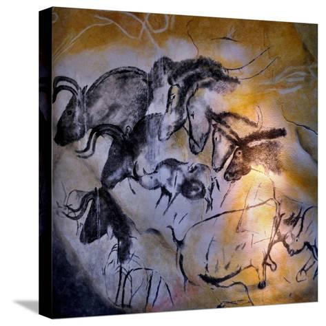 Animals and Birds, Chauvet-Pont-D'Arc Cave, Ardeche--Stretched Canvas Print