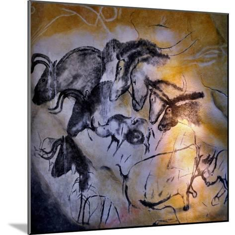 Animals and Birds, Chauvet-Pont-D'Arc Cave, Ardeche--Mounted Giclee Print