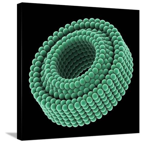 Nano-bearing, Artwork-Laguna Design-Stretched Canvas Print