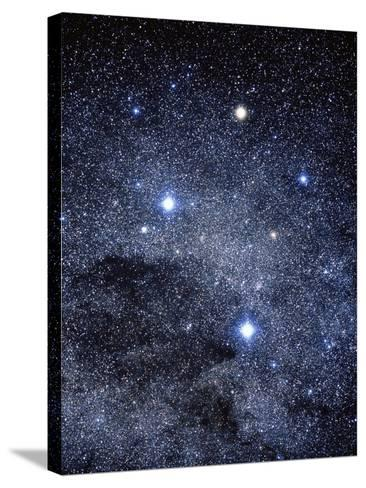 The Constellation of the Southern Cross-Luke Dodd-Stretched Canvas Print