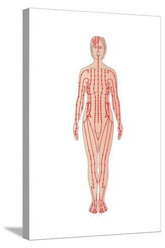 Acupuncture Points, Artwork-Peter Gardiner-Stretched Canvas Print