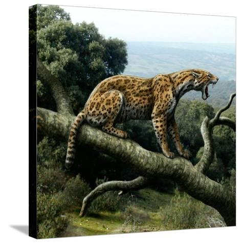 Promegantereon Sabre-tooth Cat, Artwork-Mauricio Anton-Stretched Canvas Print