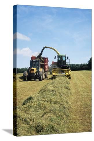 Silage Making-David Aubrey-Stretched Canvas Print