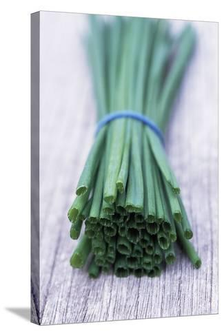 Bunch of Chives-Maxine Adcock-Stretched Canvas Print