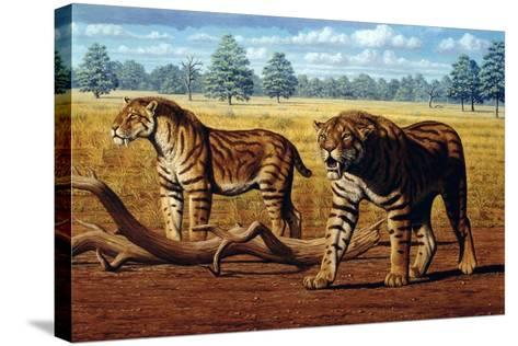Sabre-toothed Cats, Artwork-Mauricio Anton-Stretched Canvas Print